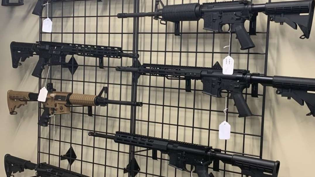 Florida's New Assault Weapons Ban Bill Explained_ Its Bad!
