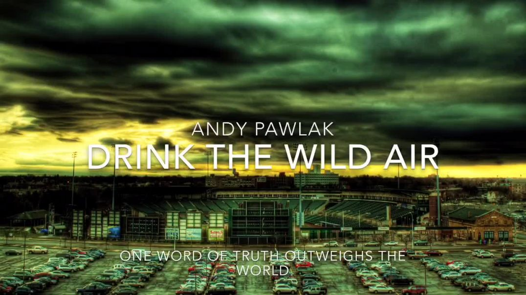 Andy Pawlak.       Drink The Wild Air