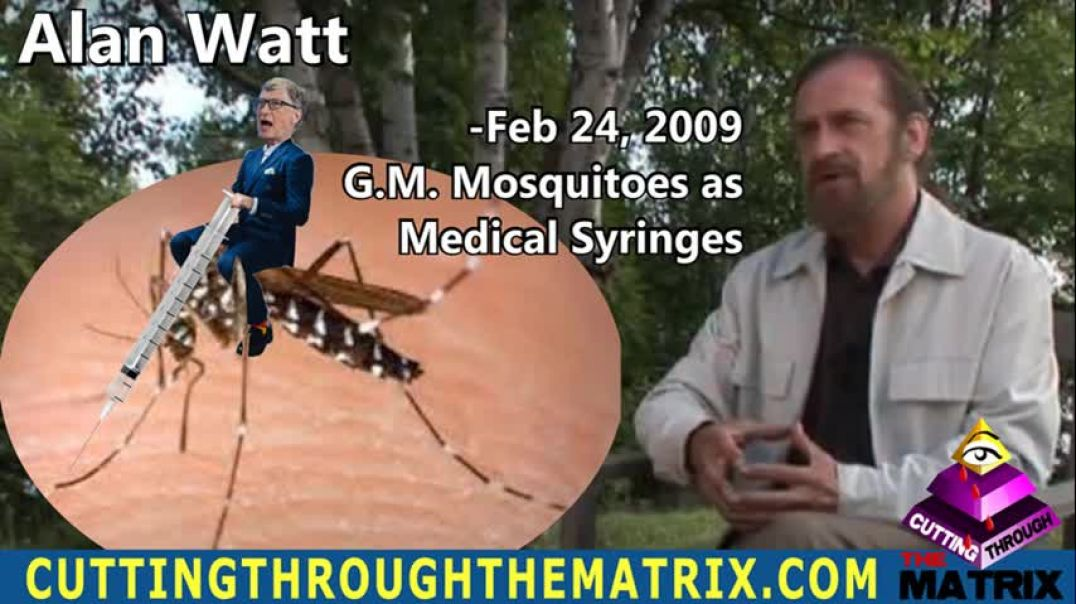 ALAN WATT ~ CUTTING THROUGH THE MATRIX ~ G.M. MOSQUITOES AS MEDICAL SYRINGES, FEB 24, 2009
