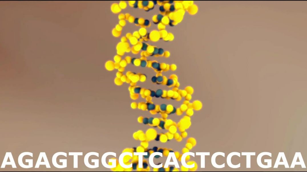 Scientists Found Proof of GOD in DNA Code - Evidence of God - The God Code - God DNA