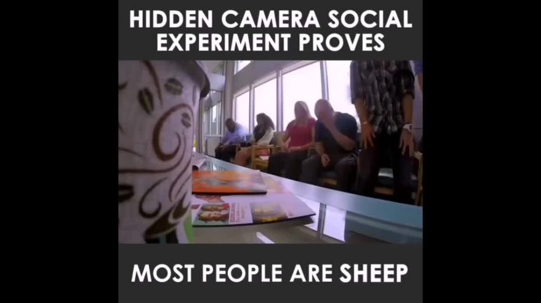 Social Experiment Perfectly Reveals Why People Falsely Believe There's A Pandemic
