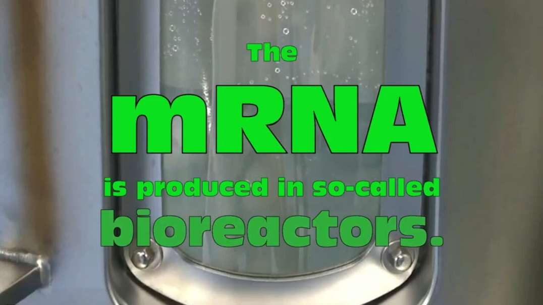 BIONTECH explains the GENE mRNA vaccine production with comment
