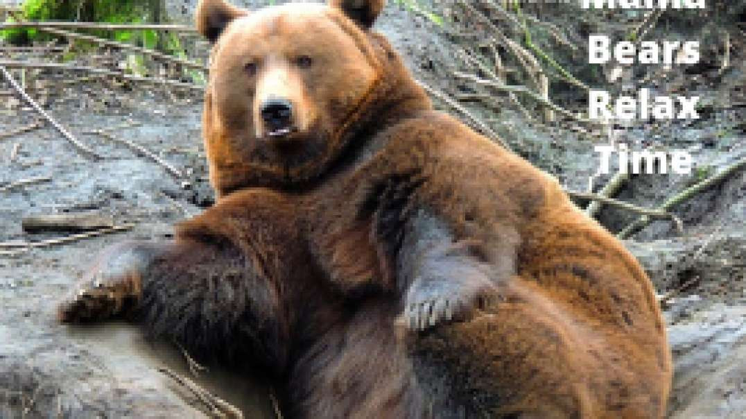 Mama Bears Relax Time 2021
